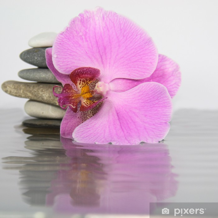 Naklejka Pixerstick Orchidea, woda, kamienie - Uroda i pielęgnacja ciała