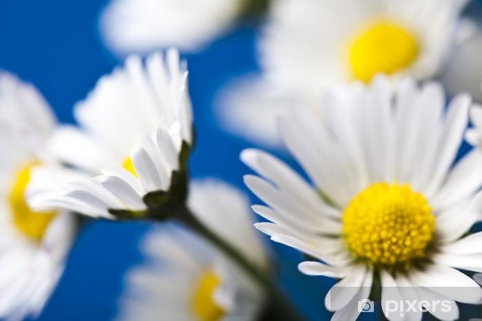Daisy Pixerstick Sticker - Flowers