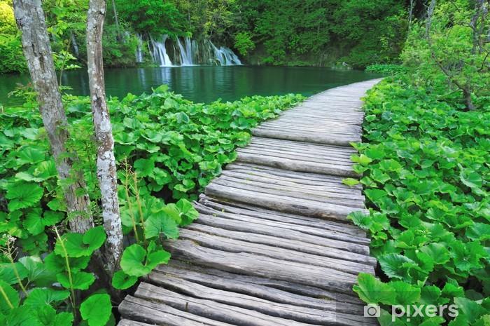 Planten En Bomen : Fotobehang loop langs een meer omgeven door planten en bomen