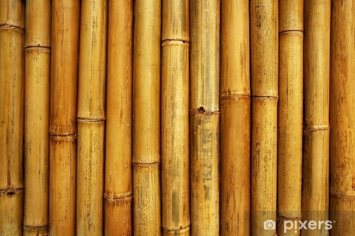 Fototapeta winylowa Bambus ogrodzenia - Tematy