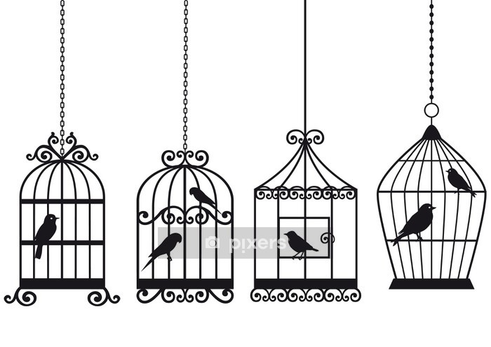 vintage birdcages with birds Wall Decal - Styles