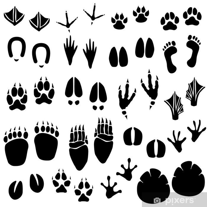 Papier peint vinyle Vecteur piste des animaux Empreinte - Mammifères