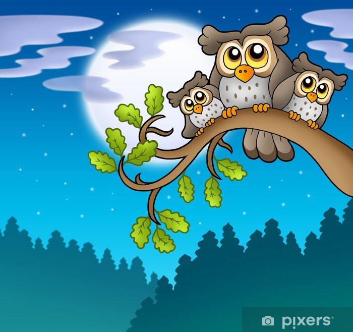 Cute owls on branch at night Pixerstick Sticker - Themes