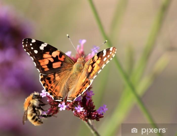 Papier peint vinyle Abeille et papillon butinant la lavande - Autres Autres