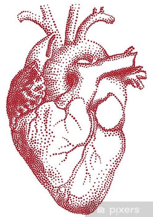 Fotomural Estándar Corazón rojo, ilustración vectorial - Partes del cuerpo