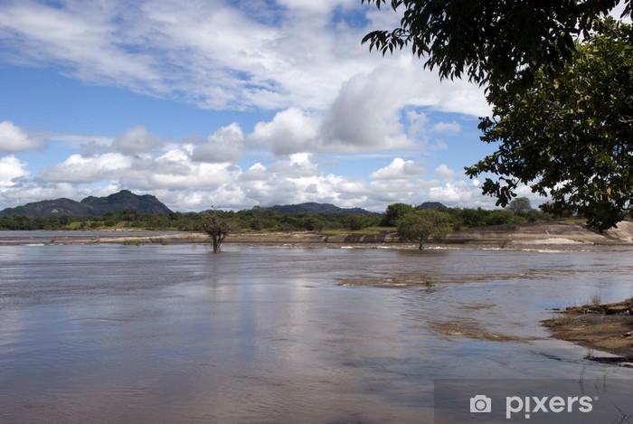 Fotomural Estándar Río Orinoco Venezuela - América