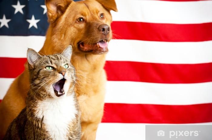 Nálepka Pixerstick Kočka a pes s americkou vlajkou - Savci