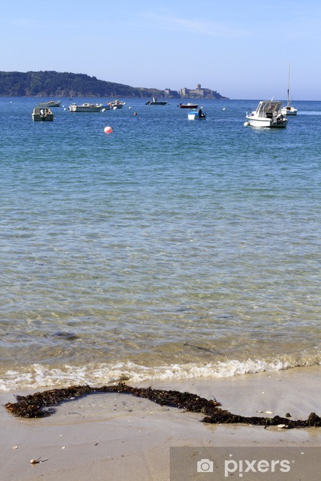 Vinylová fototapeta Algues de mer - Vinylová fototapeta