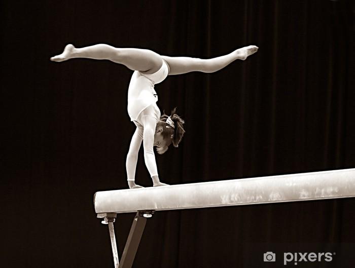 Fototapeta winylowa Gimnastyk - Przeznaczenia