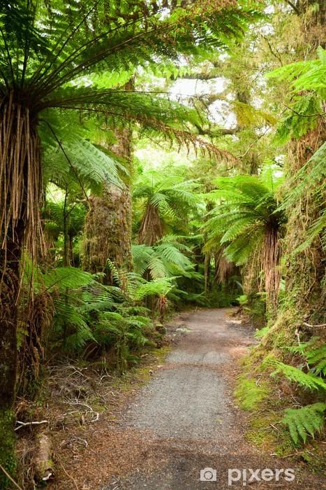 Papier peint vinyle Chemin de Rainforest - Thèmes