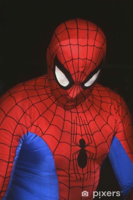 Fototapeta winylowa Spider Man -