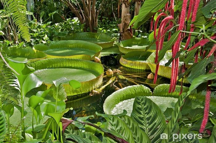 Sticker Pixerstick Nénuphars géants d'Amazonie - Plantes