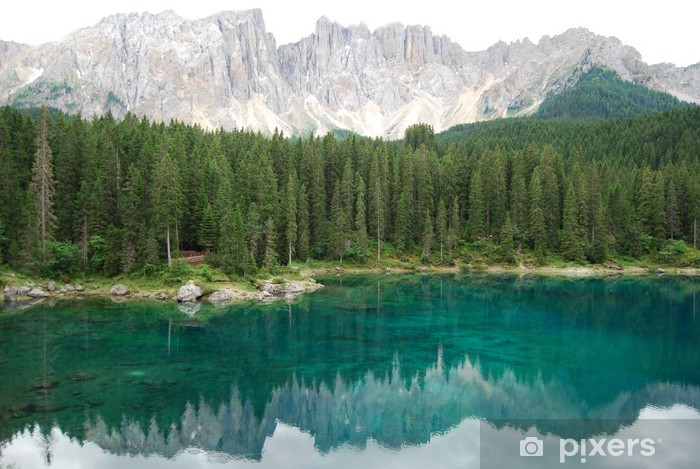 Carta da Parati in Vinile Lago di Carezza - Acqua