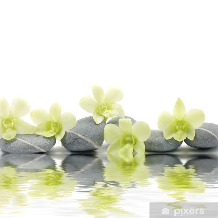 Fototapeta winylowa Piękny storczyk na zen kamienie z refleksji - Style