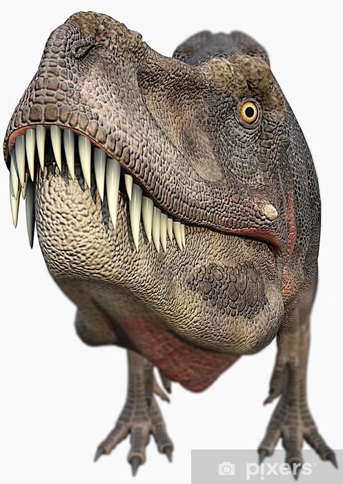 aufkleber trex dinosauriergroßer kopf • pixers®  wir