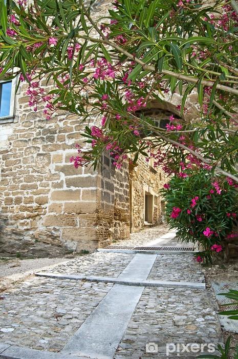 Fotomural Lavable Estrecha calle medieval en la Provenza Grillon - Europa