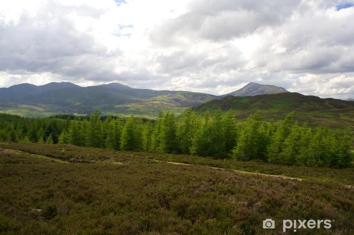 Naklejka Pixerstick Perthshire Las, Szkocja - Krajobraz wiejski