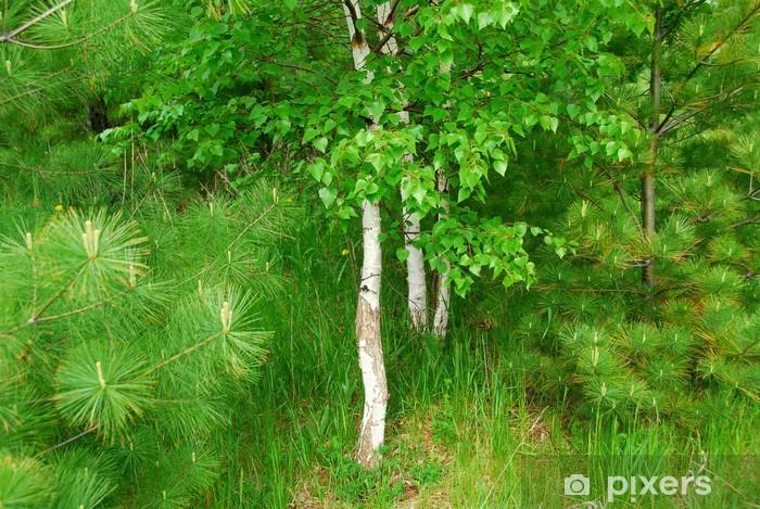Sticker Pixerstick Forest spring - Thèmes