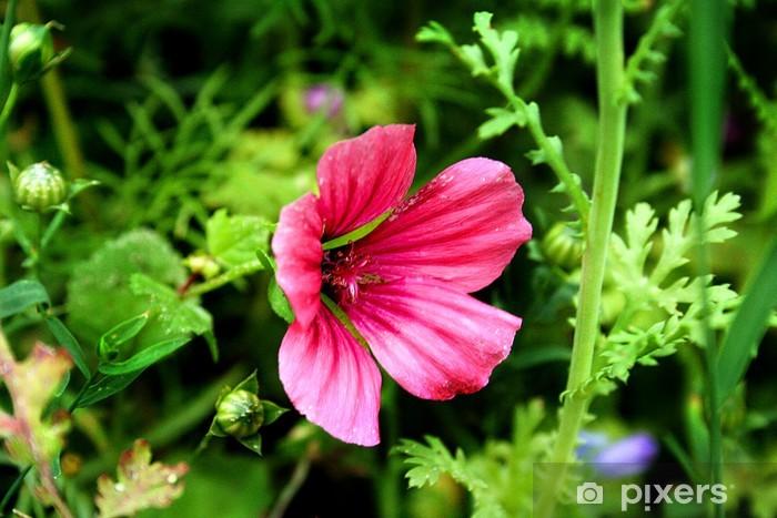 Papier peint vinyle Summerflower - Fleurs