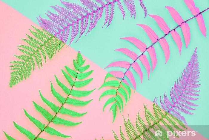 Fototapeta samoprzylepna Różowa moda paprociowa. tropikalny liść. koncepcja liści kwiatowy. żywy design. Galeria Sztuki. kreatywny koral modny kolor. minimalny styl. letni modny nastrój - Styl życia