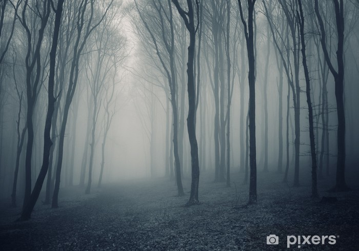 Sticker Pixerstick Forêt élégant avec brouillard - Thèmes