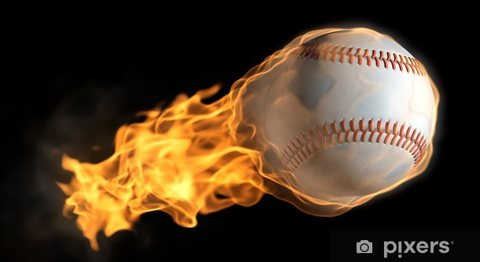 Flaming Baseball Wall Mural Pixers We Live To Change