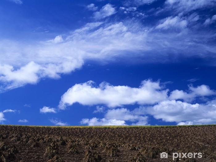 Nálepka Pixerstick 秋 の 大地 と 空 - Nebe