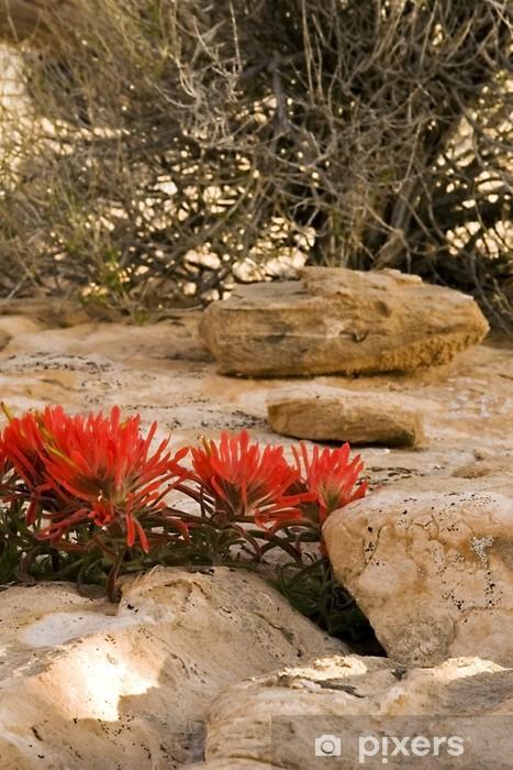 Vinyl Fotobehang Bloem brand en stenen in Moab, Utah - Woestijnen