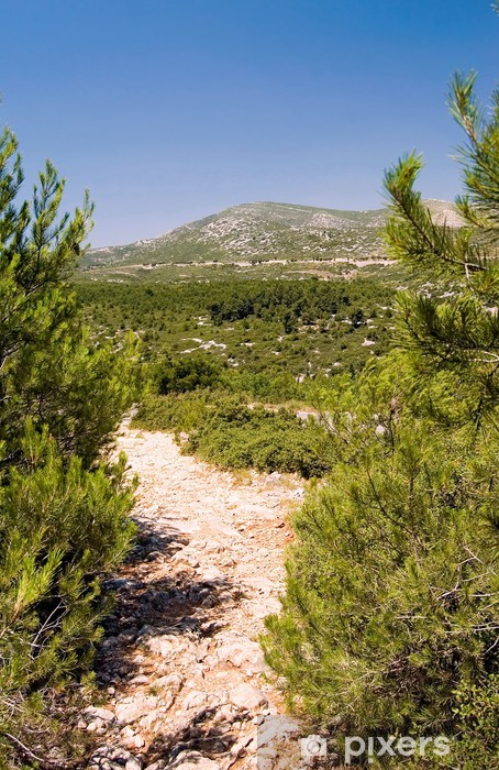 Carta da Parati in Vinile Vista dal Forêt de la Gardiole Mont Carpiagne - Campagna