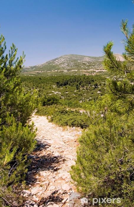 Blick vom Forêt de la Gardiole zum Mont Carpiagne Vinyl Wall Mural - Countryside