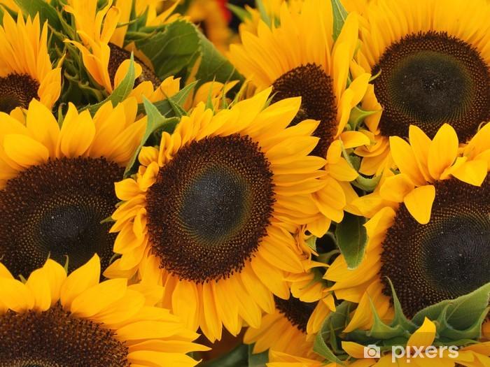 Vinyl-Fototapete Wilde Sonnenblumen auf der Seite der Straße wächst - Themen