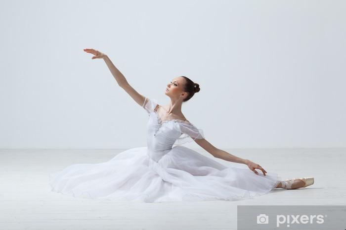 Pixerstick Sticker Balletdanser - Thema's