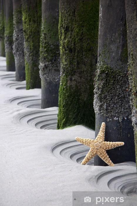 Naklejka Pixerstick Gwiazda na plaży - Woda