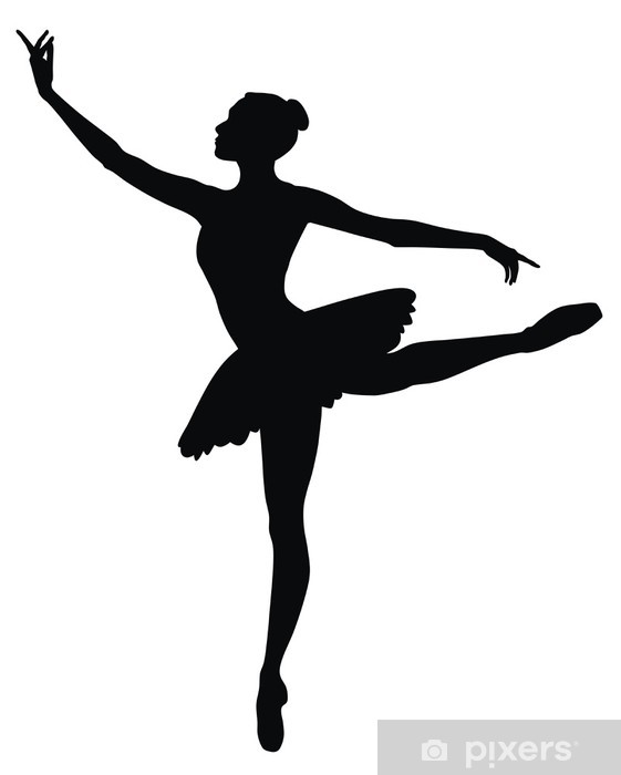 huge selection of dfde0 54786 Ballerina Wall Mural - Vinyl