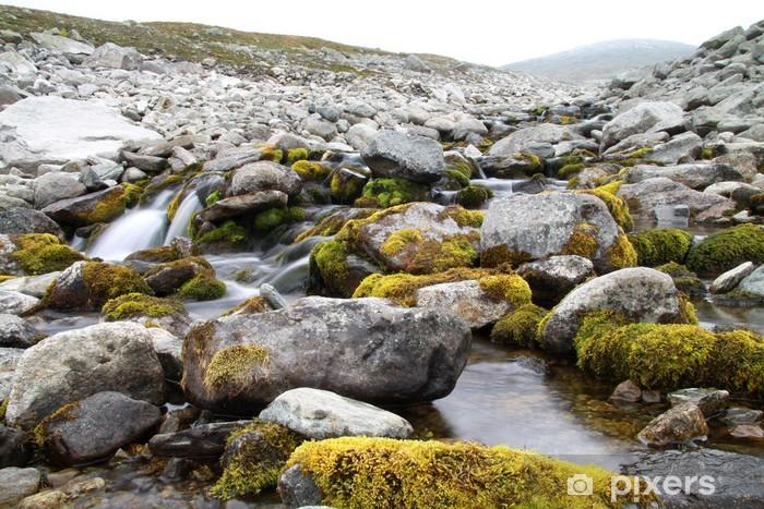 Naklejka Pixerstick Górski potok w Sarek Parku Narodowego, w Szwecji - Europa