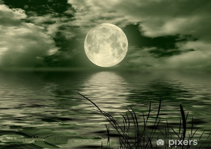 Full moon image with water Vinyl Wall Mural - Themes
