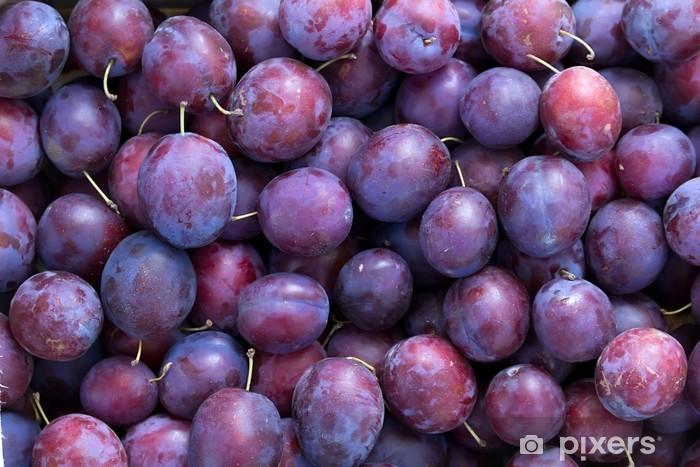 Fototapeta winylowa Śliwki, owoców, niebieski - Rolnictwo