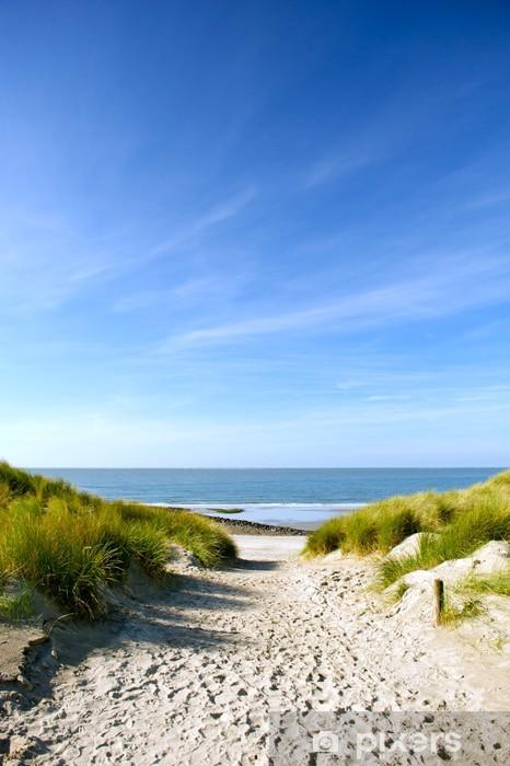Vinil Duvar Resmi Plaj ve kum tepeleri - Hollanda