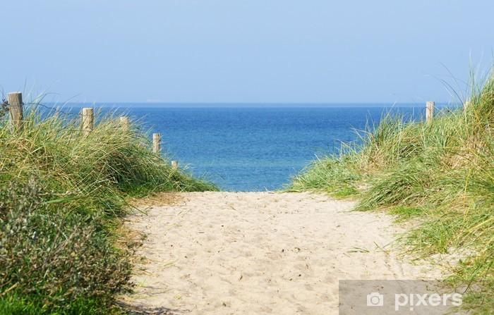 Fotomural Estándar Düne am Meer - Dune en el Océano - Mar y océano