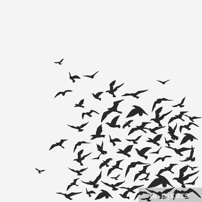 Fototapeta winylowa Ptaki w tle - Tematy