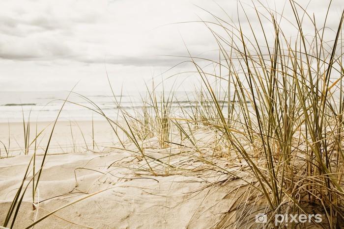 Fotomural Autoadhesivo Primer plano de una hierba alta en una playa durante la temporada nublado - Destinos