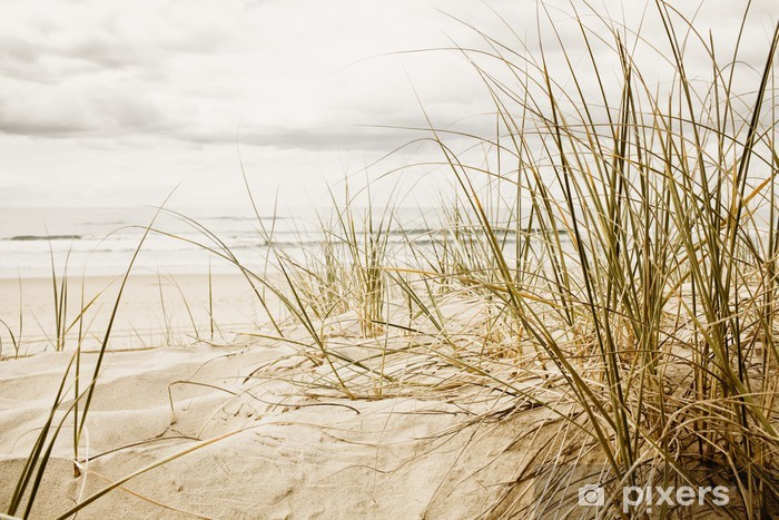 Mural de Parede Autoadesivo Close up of a tall grass on a beach during cloudy season - Destino