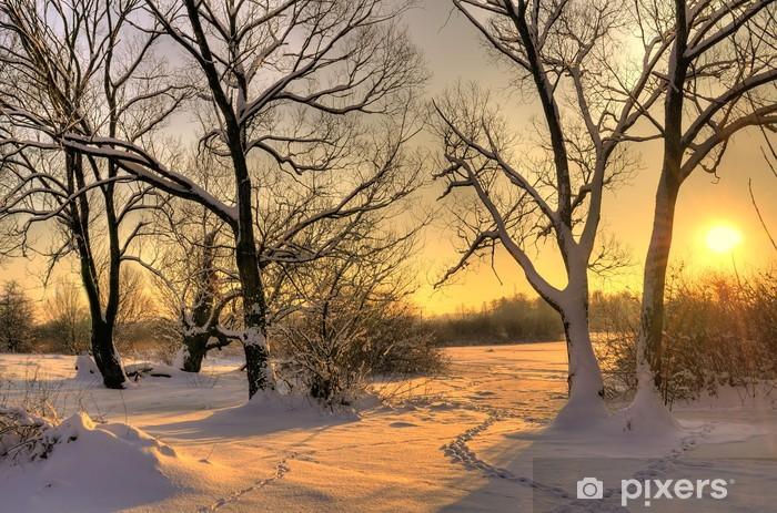 Fotomural Lavable Puesta del sol hermosa del invierno con los árboles en la nieve - Temas
