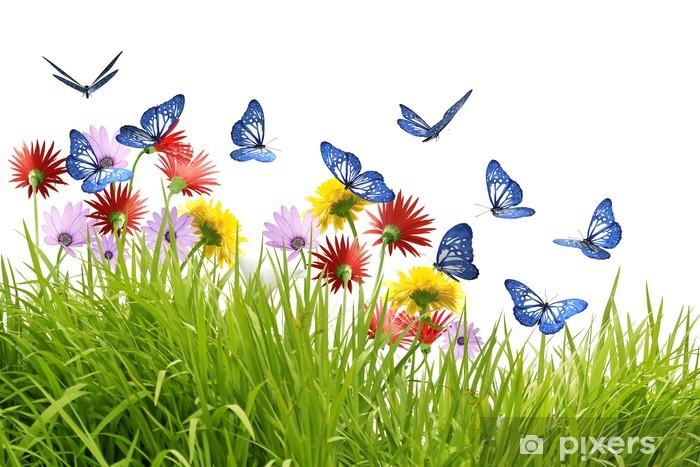 Fototapeta Grupa niebieskie motyle fruwające piękne kwiaty • Pixers® -  Żyjemy by zmieniać