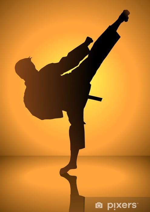Fototapet av Vinyl Silhuetten av en karateka gör stående side kick - Teman