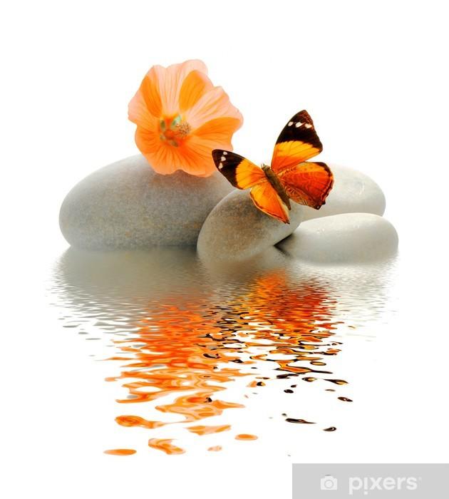 Papier peint vinyle Palette Papillon -