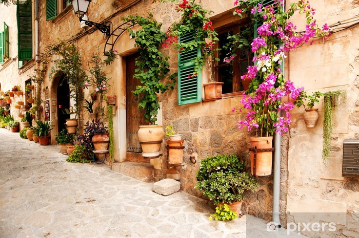 Papier peint lavable Rue romantique avec des fleurs et de la verdure - Destin