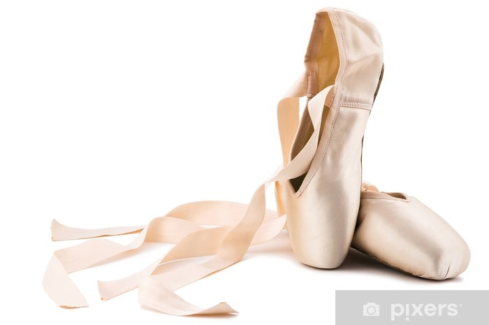 ballet shoes Vinyl Wall Mural - iStaging