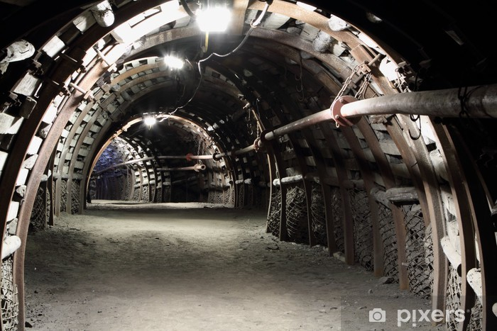 Corridor in a underground mine Vinyl Wall Mural - Themes