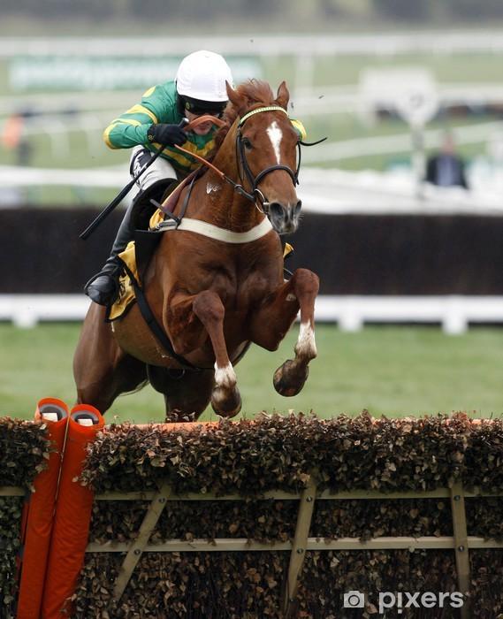 Vinyl Fotobehang Horse Racing Jump - Individuele sport